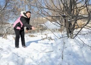 Снегозадержание на огороде